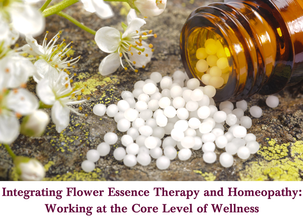 Flower Essence Therapy and Homeopathy